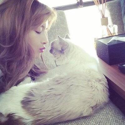ローラ 猫