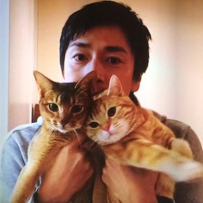 徳井の飼っている猫ちゃん