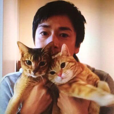 チュートリアル徳井の飼っている猫の名前・種類と、同じ猫の飼い方