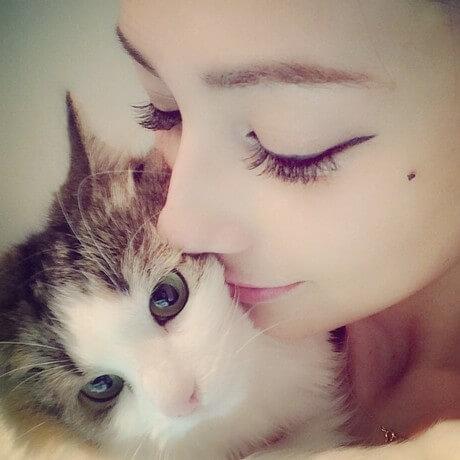 ダレノガレ明美の愛猫「CoCo」と、同じ猫「ノルウェージャン