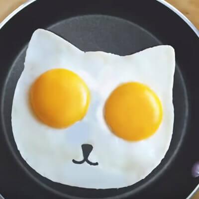 猫の目玉焼き