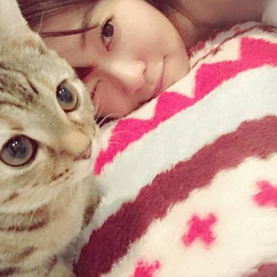 HKT48指原莉乃の猫「ミヌエット五郎・マンチカン太郎」が可愛すぎる♡猫の種類や飼い方は?