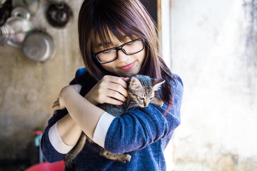 cat20160625_004