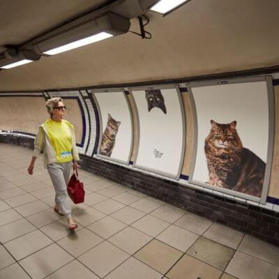 ロンドンの広告