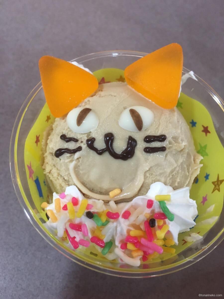 サーティワンの猫