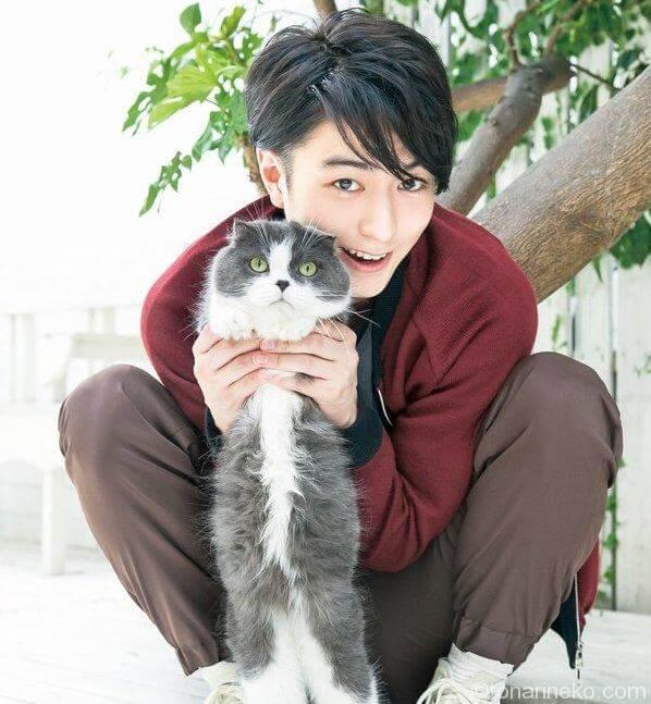 稲葉友さんと猫