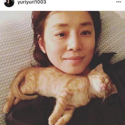 """石田ゆり子さんが飼っている猫の名前・種類と、同じ猫の飼い方★""""逃げ恥""""で人気♪Instagramが癒されると話題♡"""