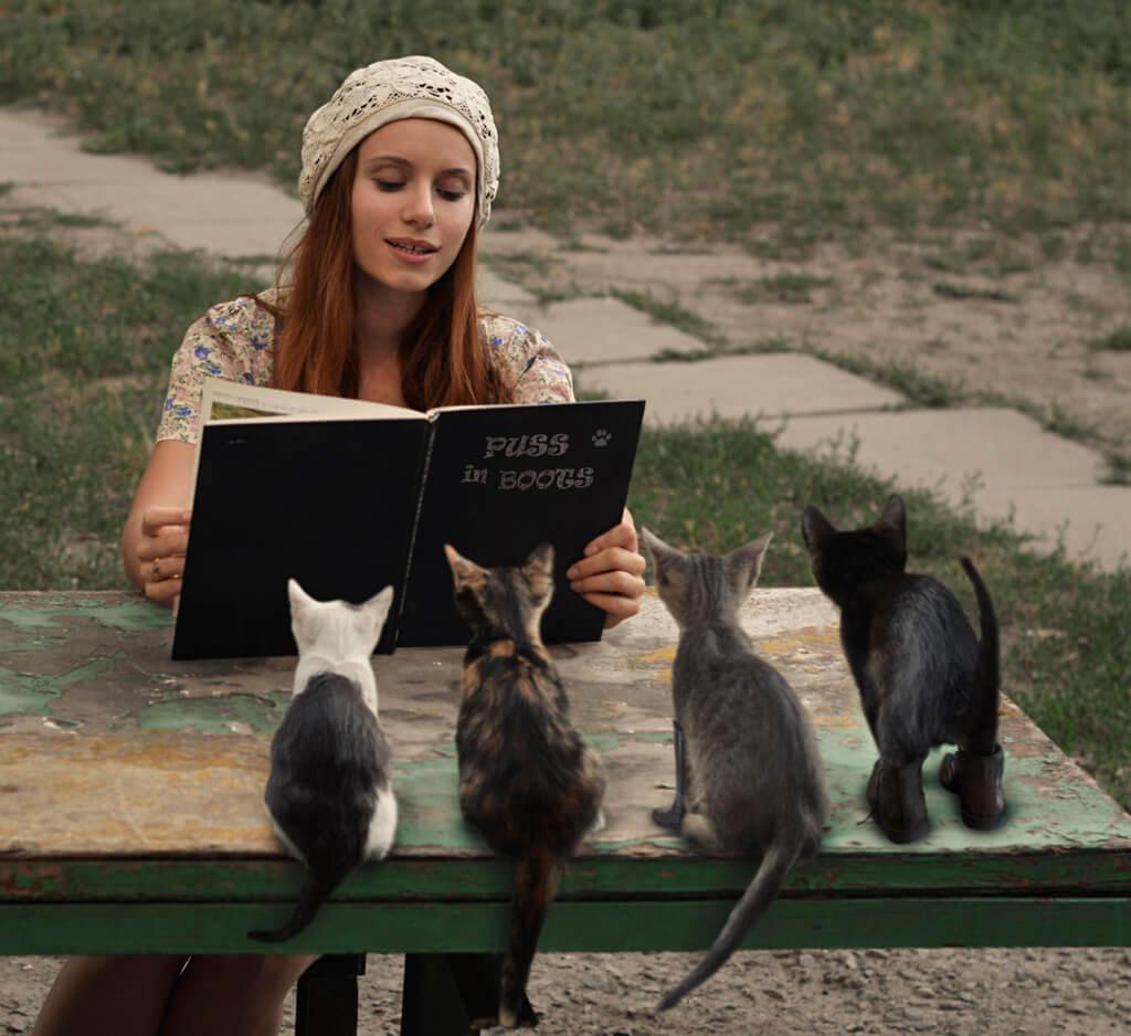 フリー画像 猫と人