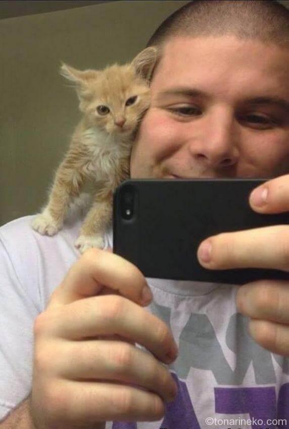 猫と一緒の写真