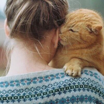 猫とラブラブ