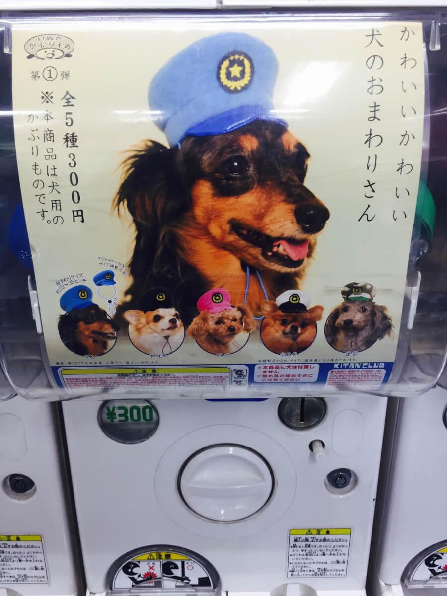 犬バージョン