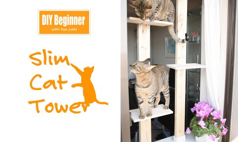 DIY Beginner with 2 cats