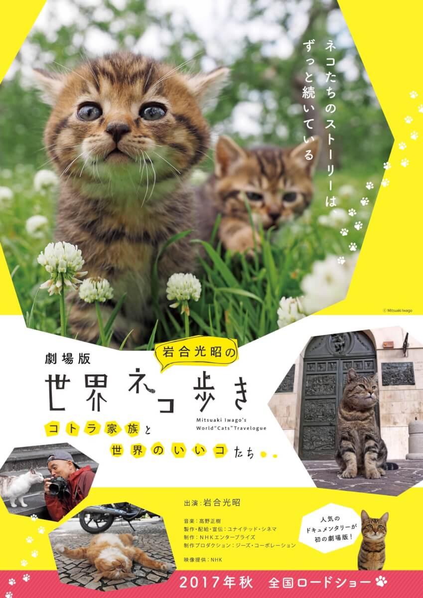 ネコ歩き映画
