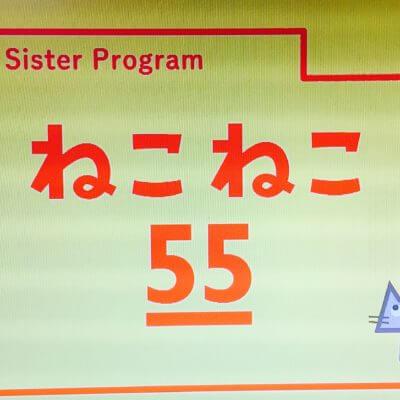 【新☆猫番組】「ねこねこ55」がNHK Eテレで放送開始♪