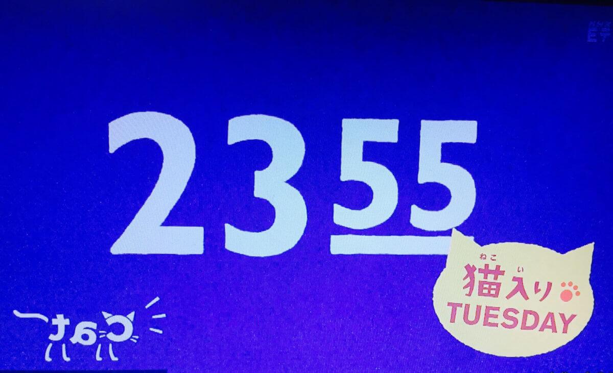 2355猫入りチューズデー