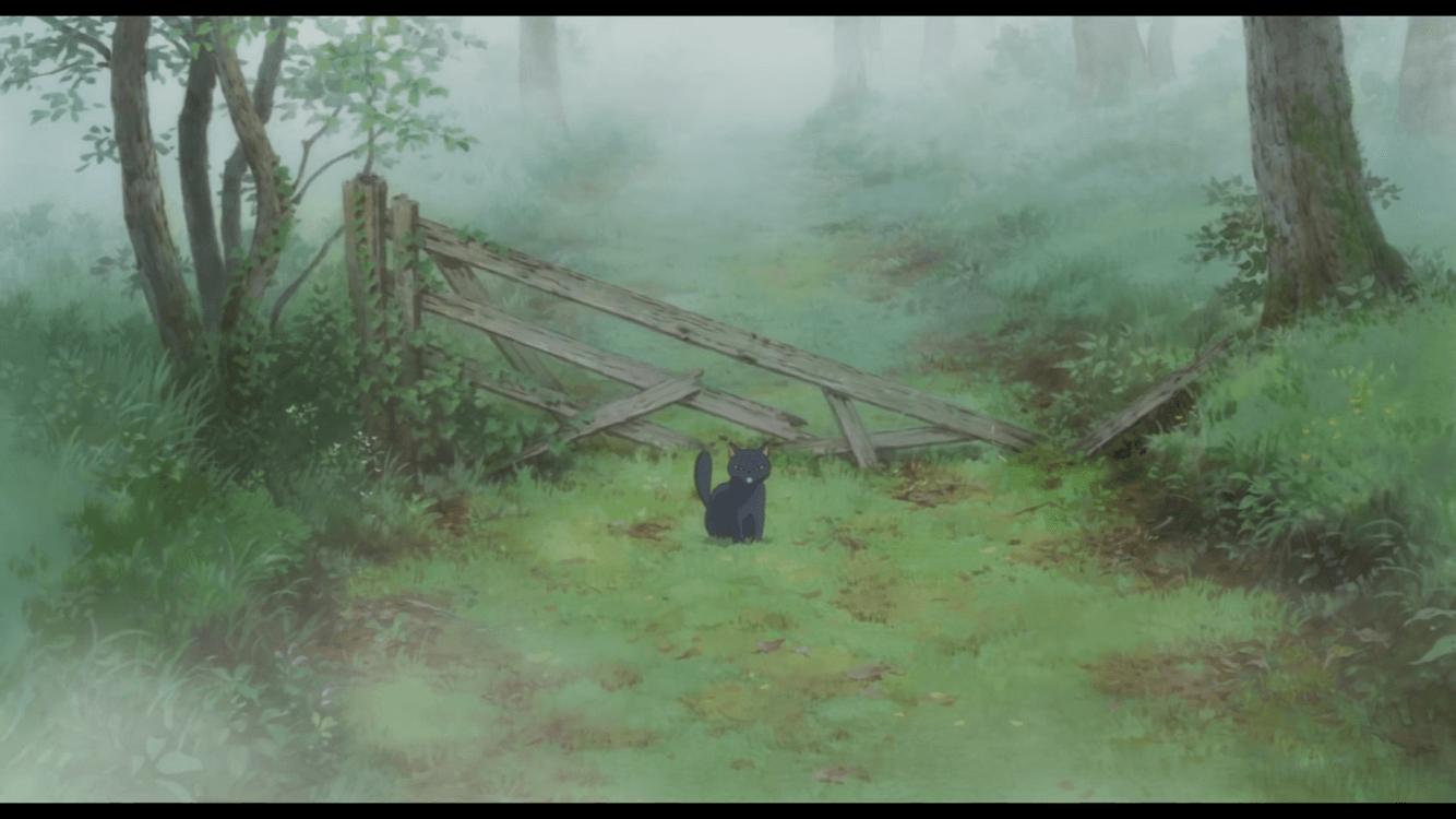 森の中のティブ