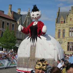 まさに猫まみれ!3年に1度のベルギーの伝統「猫祭り」がすごすぎる♡