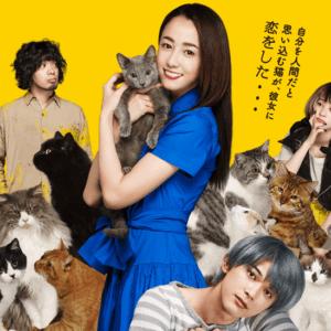 待ちきれない!!人生を温かく見つめ直すキュンキュン猫映画「猫は抱くもの」来月公開♡