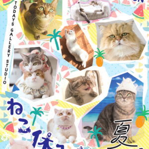 トータルフォロワー300万人超!スター猫が集合「ねこ休み展 夏2018」始まる♪