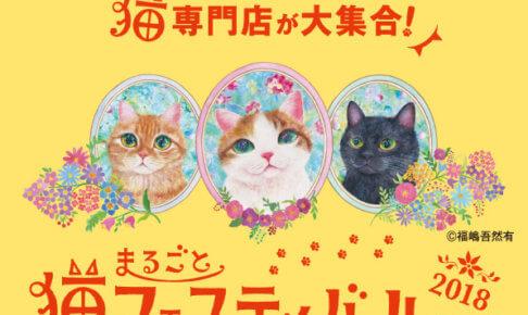 猫フェスティバル