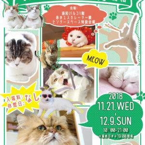 「ねこ休み展」が浦和に初上陸!2019年のカレンダーも発売決定♡